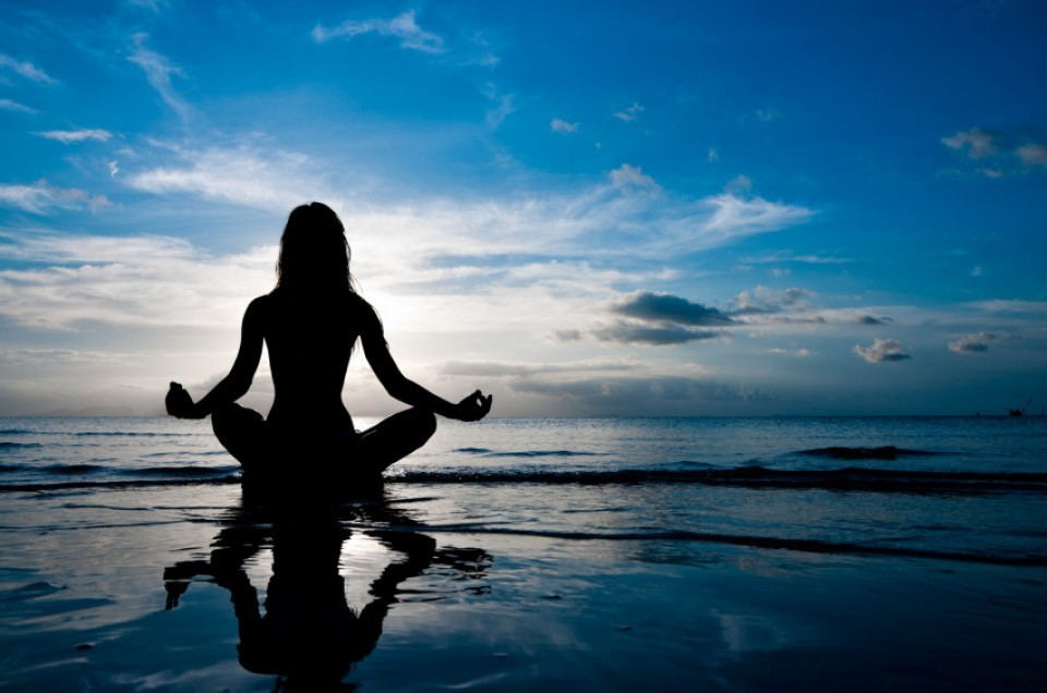 1) anatomy and alignment in asanas